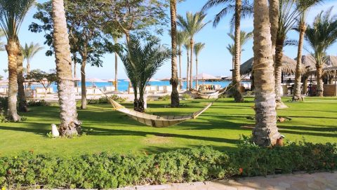 Tourism in Hurghada 2020 - Vacation Rentals in Hurghada Online - Book on www.apartmentsinhurghada.com