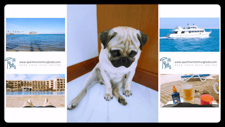 Don't Be Grumpy - Hurghada Opens For Tourism on July 1, 2020 - Book Your Holiday Rental in Hurghada Online - www.apartmentsinhurghada.com
